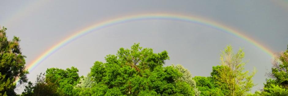 Denver Rainbow