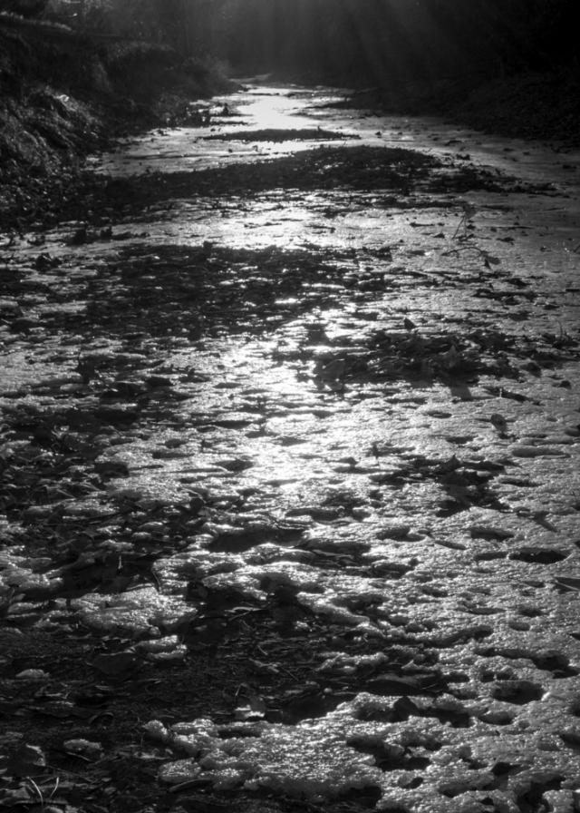 Light and Ice