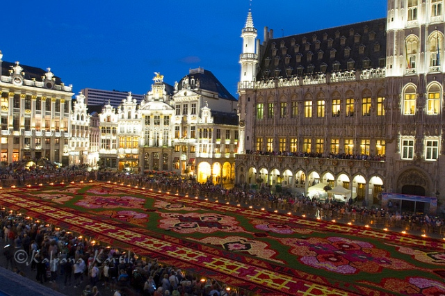 The flower carpet illuminated at night for sound and light show