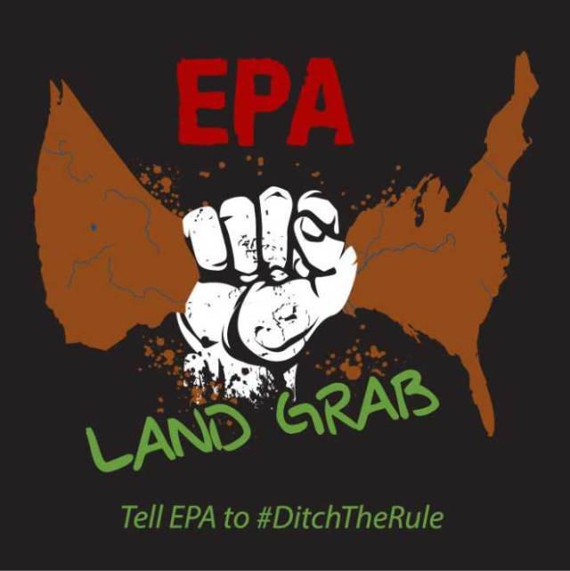 Ditch the Rule | The Farm Paparazzi